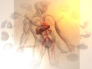 Anat-Physio-pathologies